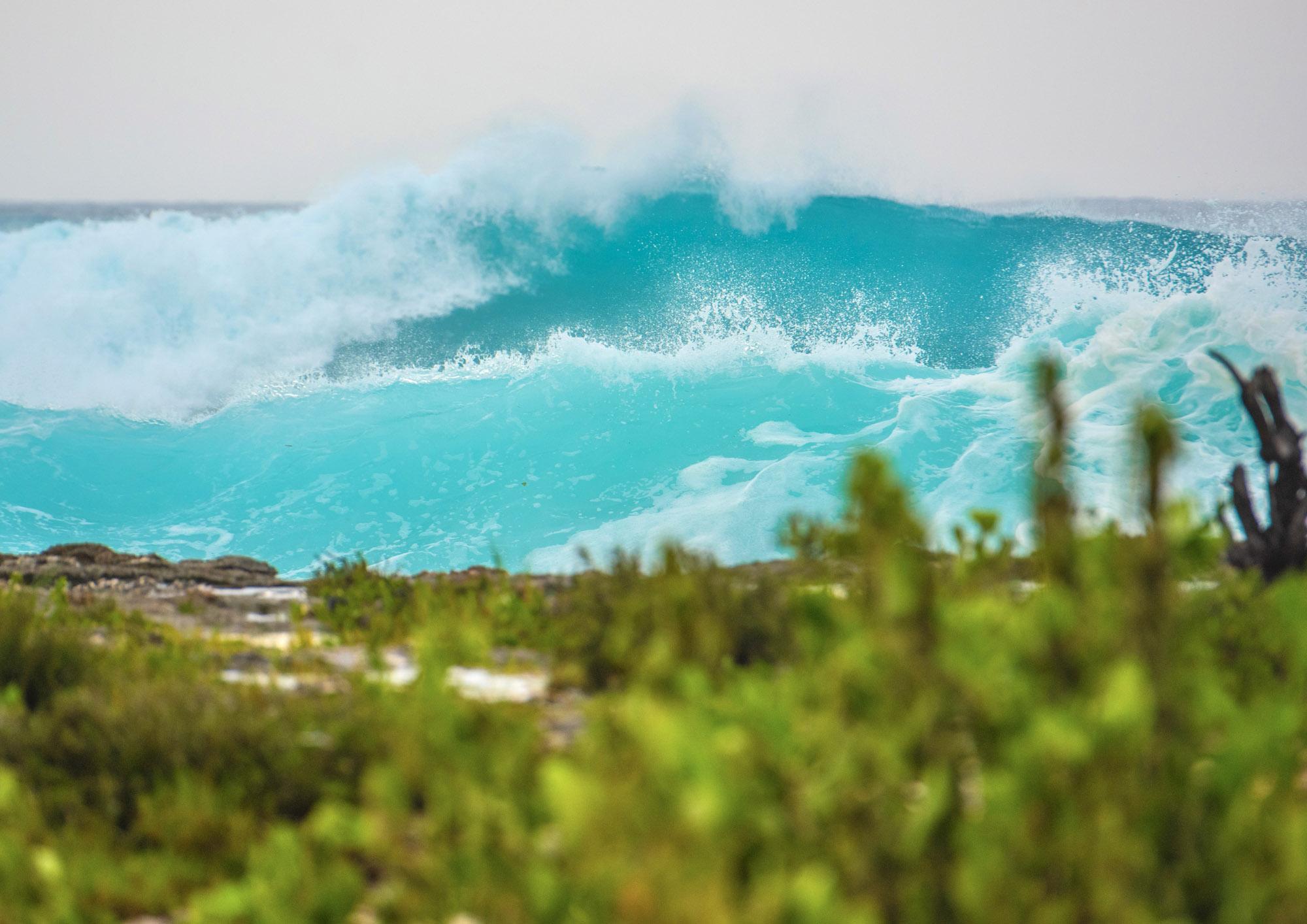 Tropical Storm Delta = Happy Surfers